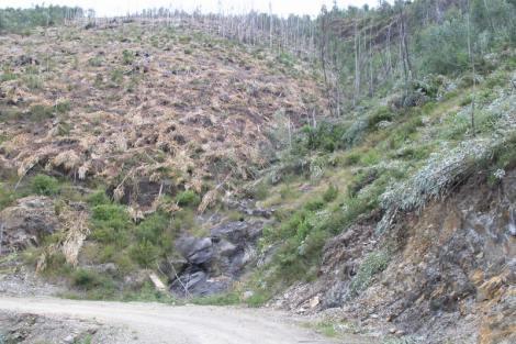 Perspectiva do vale 4a no in�cio de Julho