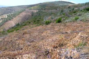 Perspectiva dos trabalhos realizados entre os vales 4a e 4b