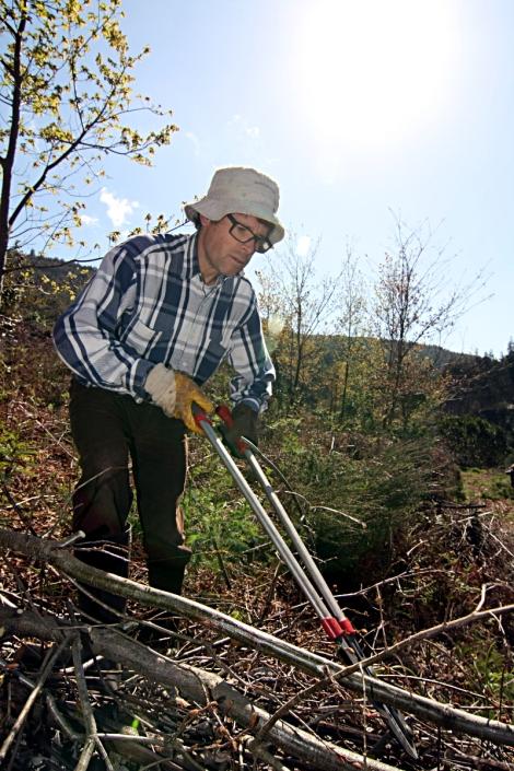 Voluntário desramando árvores cortadas