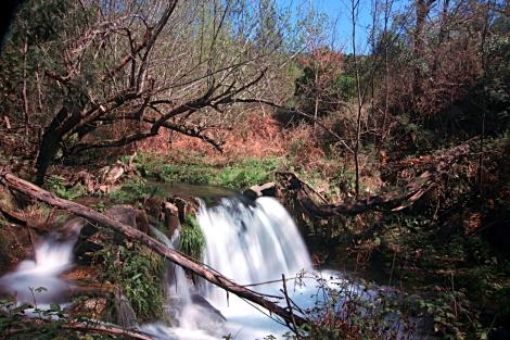 As águas corriam abundantes no ribeiro