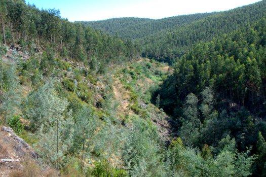 Encosta antes de aparecerem as primeiras antigas terras agrícolas de Belazaima-a-Velha