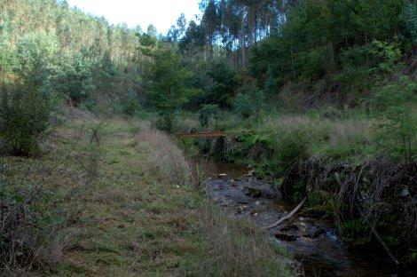 Margens do ribeiro e ponte do trilho PR8