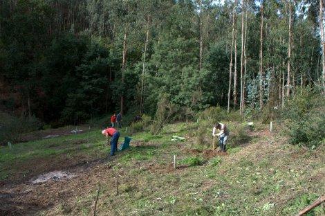 Voluntários dando início aos trabalhos