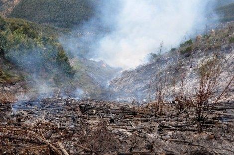 Perspectiva desta área do vale, após a queimada de 2011