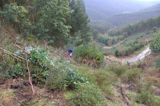 Perspectiva do vale e dos caminhos que o atravessam