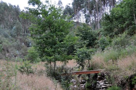 Ponte em Chão do Linho (junto ao Feridouro), recuperada