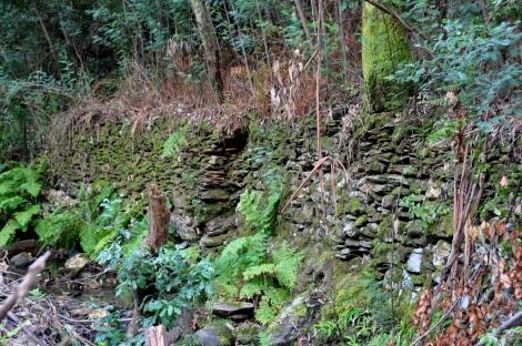 Antigos muros em pedra, nas margens do ribeiro