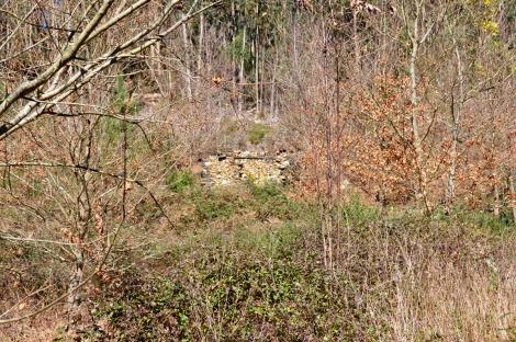 Antiga casa de arrumo ou de animais