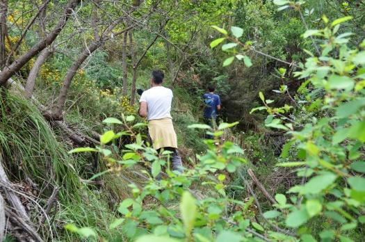 Trabalho dos voluntários já junto ao vale