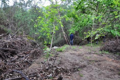 Depois da lenha que aqui se acumulou já em Dezembro de 2013, esta área ainda vive o seu