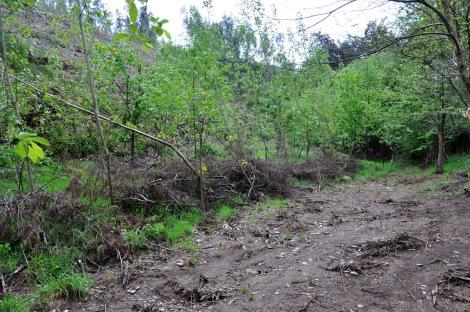 Obstruído, o ribeiro galgou as margens e levou o solo