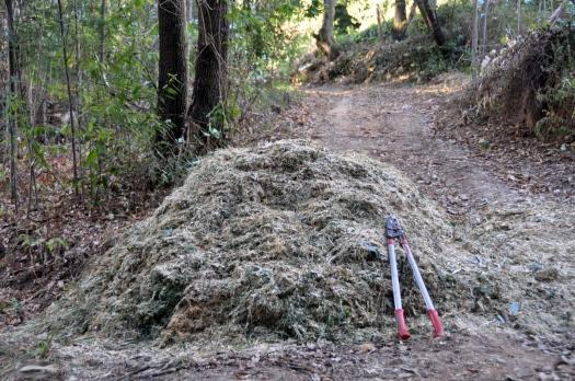 Um dos montes de ramada triturada produzido
