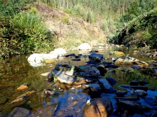 Visto assim, até parece um grande rio!