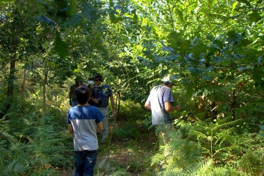 Já na zona ribeirinha, visita a uma área plantada em 2011