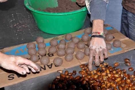 Manufactura de bolas de sementes, num evento do Movimento Terra Queimada em 2014