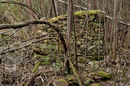 Moinho em ruinas, ainda na margem sul. Abril